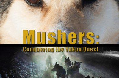 Mushers : à la conquête de la Yukon Quest
