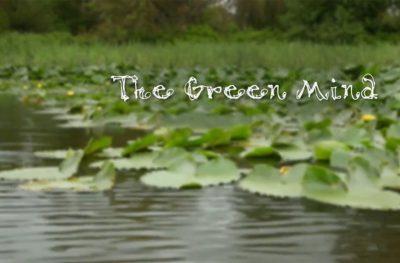 À l'an vert